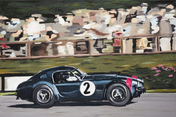 ford shelby ac cobra fine motor car painting of DHG racing Shelby Cobra 289